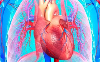 Ишемические расстройства мышцы сердца - Квинмед