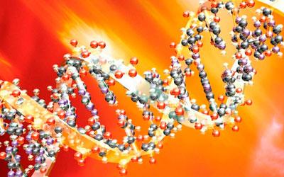 Пониженная концентрация общего белка – Квинмед
